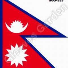 विश्वकप क्रिकेट लिग–२ स् नेपाल ओमानसँग पाँच विकेटले पराजित